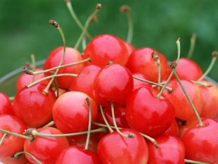 Cherry-fruit