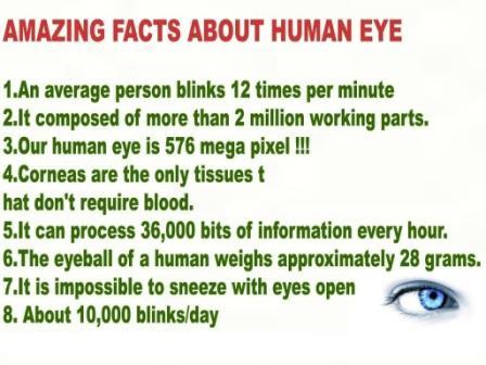 Human-Eye facts