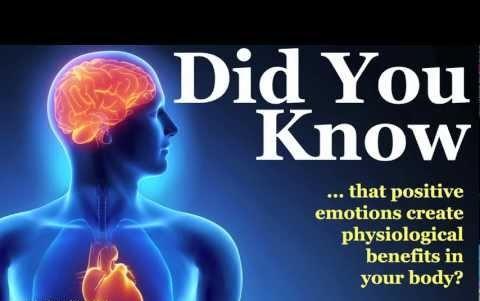 human heart fact
