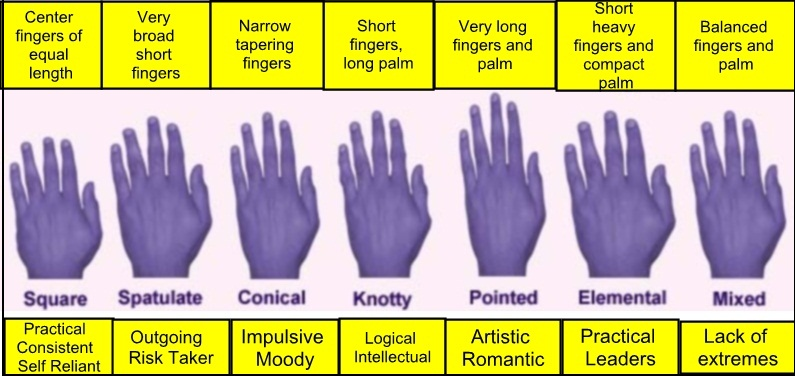 palm-reading-seven-types-of-hands